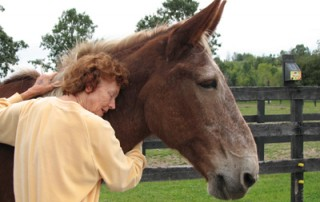 Joan Axelson at Equine Advocates
